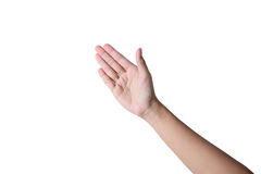 Hand för affärsman Royaltyfri Fotografi
