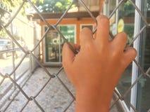 Hand för barn` s med skyddsgallret arkivbilder