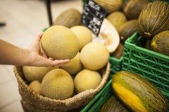 Hand för kvinna` som s väljer en melon royaltyfri fotografi