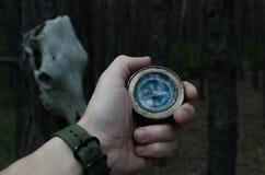 Hand för man` s med en kompass mot en pinjeskog och en hästskalle som hänger från träd Royaltyfri Foto