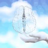 Hand för medicinsk doktor som visar 3d den glass mänskliga hjärnan Royaltyfria Foton