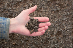 Hand of the farmer holding handful of earth Stock Images