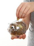 Hand Feeding Piggy Bank Royalty Free Stock Photos