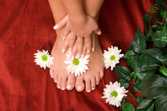 Hand and feet care Royalty Free Stock Photos