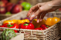 Hand of female costumer holding bell pepper in organic section. Of supermarket stock photos