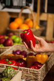 Hand of female costumer holding bell pepper in organic section. Of supermarket royalty free stock images