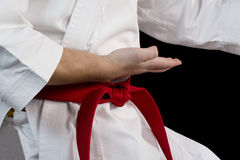 Hand fighter karate Stock Image