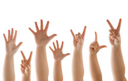 Hand and Finder Gestures On White Royalty Free Stock Image