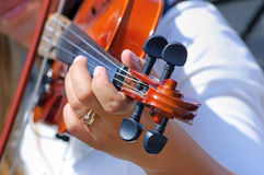 Hand on the fingerboard of violin Stock Image
