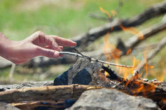Hand in the fire. Hand throws a twig into the fire Stock Photo