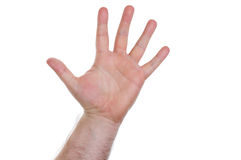 Hand, five fingers. Hand with five fingers pointing up Royalty Free Stock Photo