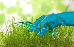 Hand with flask and grass Stock Photo