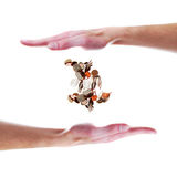 Hand with floating coins Stock Image