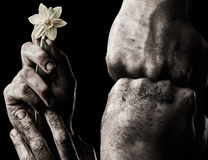Hand with flower and clenched fist Royalty Free Stock Images