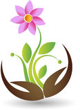 Hand flower logo. Illustration art of a hand flower logo with  background Stock Photography