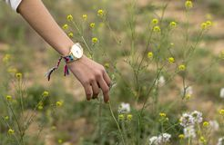 Hand in flowers royalty free stock photography