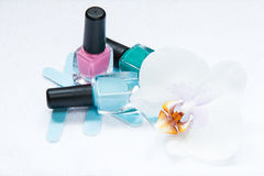 Hand and foot care in the spa salon royalty free stock images