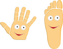 Hand And Foot Cartoon Illustration. Hand And Foot Cartoon Vector Illustration royalty free illustration