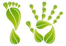 Hand and foot with leaves, vector. Hand and foot with green leaves, vector background Royalty Free Stock Photo