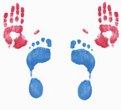 Hand and foot prints. Two red hands and two blue feet fingerpainted Royalty Free Stock Image