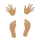 Hand and foot silhouette. Body part stock illustration