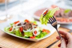 Hand with fork and vegetable salad with beef Royalty Free Stock Image
