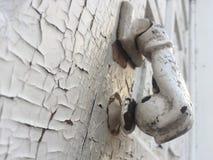 Hand formad knopp av en trädörr royaltyfri fotografi