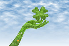 Hand with a four-leaf clover. Isolated, Hand covered with grass, a clover in his hand, a clover and a hand covered with green grass Royalty Free Stock Photo