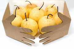 Hand and fruit. Paper produced by hand and fruit Royalty Free Stock Images