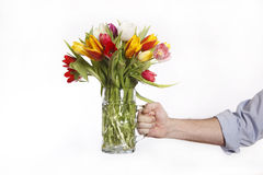 A hand full of colorful tulips Stock Image