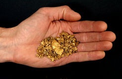 Hand full of nuggets. Man's hand holding Gold nuggets stock photo