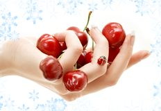 Hand full of red cherries Royalty Free Stock Images