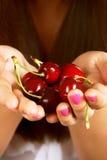 Hand full of red cherries Royalty Free Stock Photo