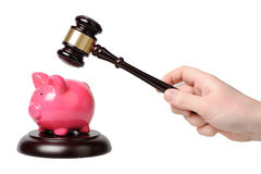 Hand with gavel beats on a piggy bank. On a white background Stock Image