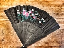 Hand - gehouden ventilator royalty-vrije stock foto's