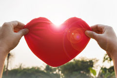 Hand gently raise up red heart, love and care concept Royalty Free Stock Photo