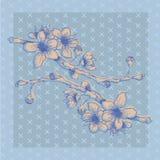 Hand-geschetste blauwe tak met bloemen Stock Foto's