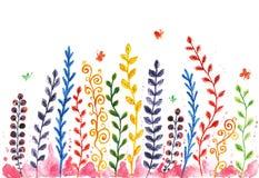 Hand geschilderde waterverf kleurrijke installaties, takjes en bloemen Royalty-vrije Stock Fotografie