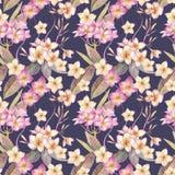 Hand geschilderde waterverfillustratie Bloemen naadloos patroon met exotische tropische bloemen van plumeria vector illustratie