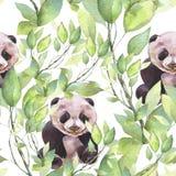 Hand geschilderde waterverfillustratie Panda in de groene takken vector illustratie