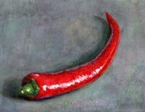 Hand geschilderde waterverfillustratie van één roodgloeiende Spaanse peperspeper op grijze achtergrond vector illustratie