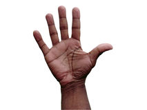 Hand gesture - open. Close up photo of a African American male open hand gesture isolated via clipping path royalty free stock photos