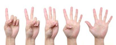 Four fingers clipart - ClipartFest