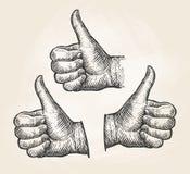 Hand, gesture thumbs up. Vintage sketch  illustration Stock Images