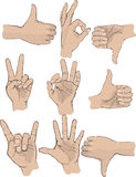 Hand gestures. Illustrated set on hands making gestures in nine different positions, isolated on white background Stock Illustration