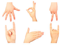 Hand gestures Royalty Free Stock Photo