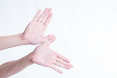 Hand gestures such as flying birds on a white background. Royalty Free Stock Images