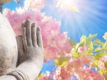 Hand gestures of sun salutations NAMASKARA by Buddha on background of blossom Japanese apple .
