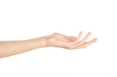 Hand gestures theme: the human hand shows gestures isolated on white background in studio Stock Image