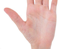 Hand gesturing Royalty Free Stock Photography
